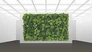 """【工业之美】这些""""活体机器""""让污水处理厂变为温室花园"""