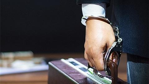 中央纪委国家监委今年将研究起草政务处分法、监察官法