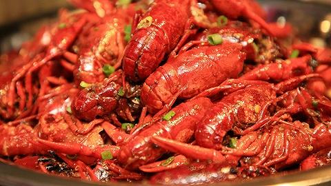 小龙虾批发价一个月内降一半,此时不吃待何时?